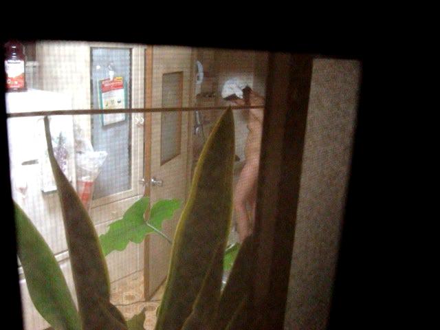 【民家盗撮】窓から見えた隣人の恥ずかしい姿 05