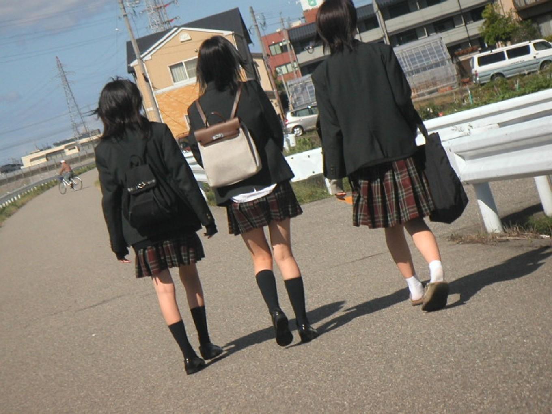 【JK街撮り】ムッチリとはまた違う色香wwwポ○キーみたいな細脚のJKたち 16