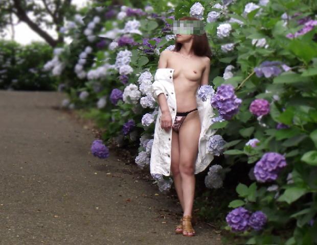 【野外露出画像】青空の下でおっぱいを露出する変態女の画像 16