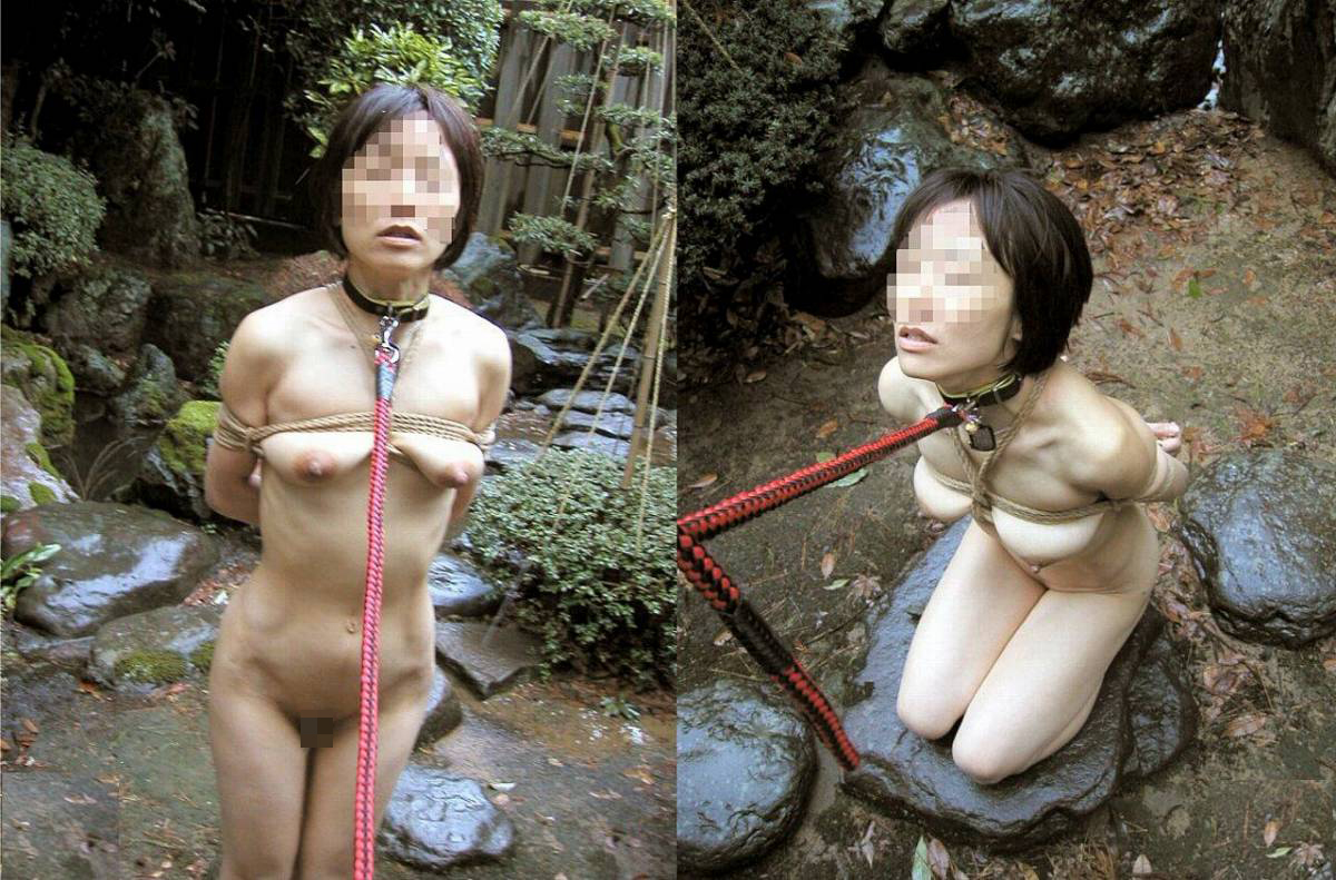 【SMエロ画像】調教の一種と説明あれば納得w野外で縛って露出引き回しwww 16