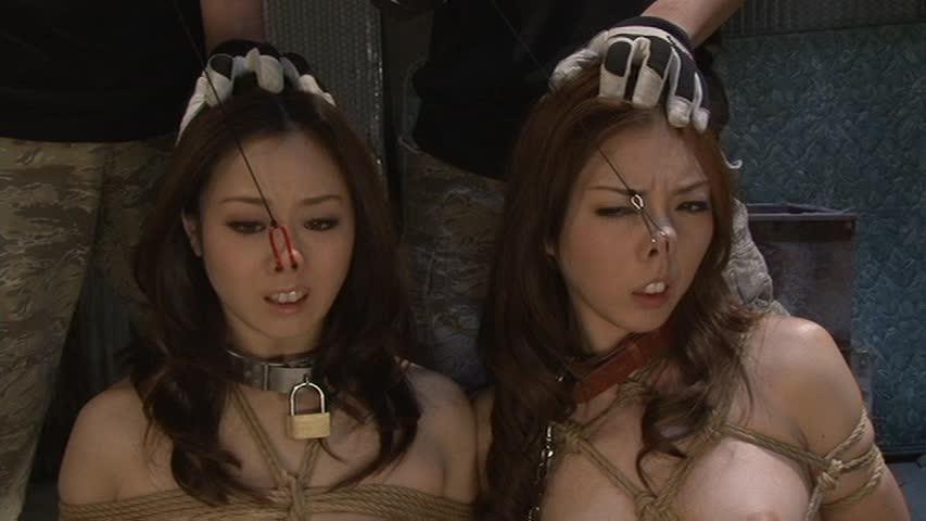 【SMエロ画像】ここまでされても可愛さ残る人もいるw屈辱の鼻フック責めwww 14