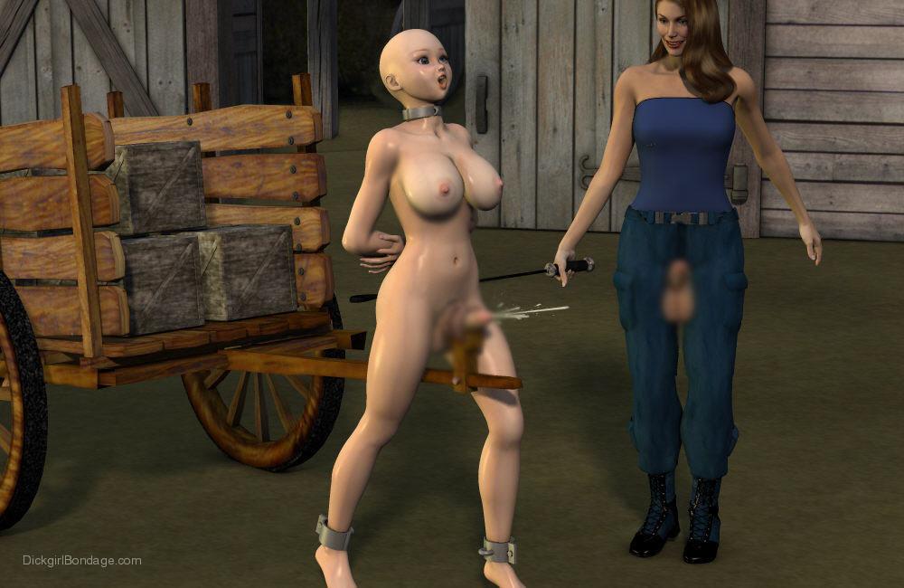 【二次エロ画像】この技術は無駄!?3Dでふたなり娘を性的調教www 20