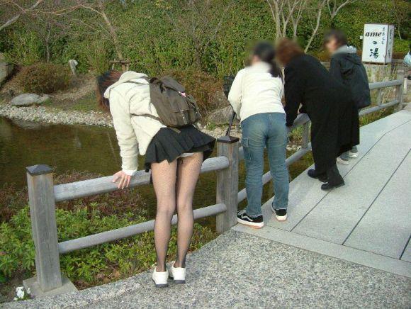 【パンチラエロ画像】天然の疑いも発生するうっかり女子の前屈みチラwww 05