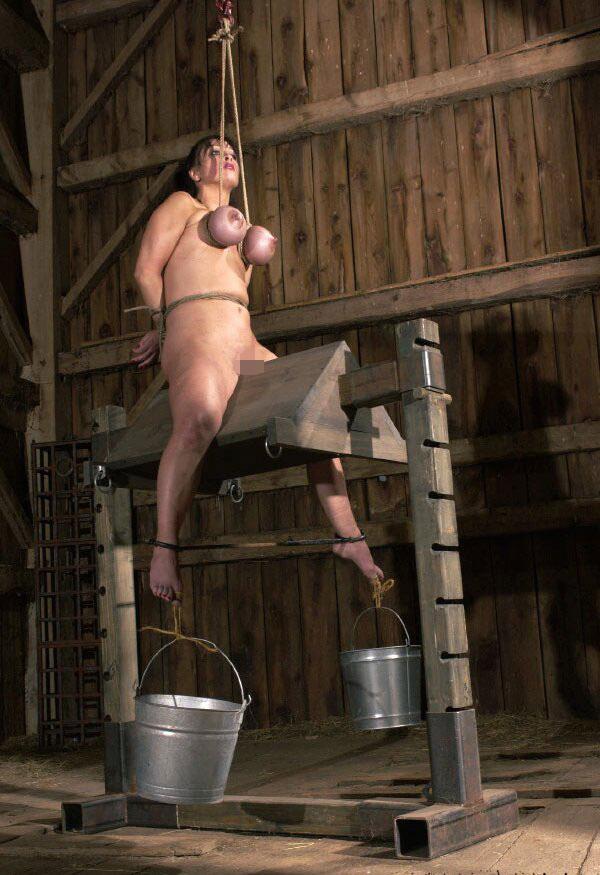 【SMエロ画像】鋭利な背中に乗って絶叫するM女たちの三角木馬拷問www 07
