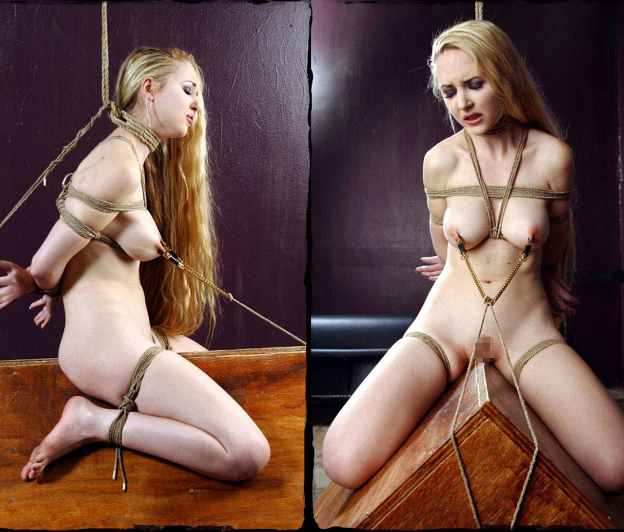 【SMエロ画像】鋭利な背中に乗って絶叫するM女たちの三角木馬拷問www 10