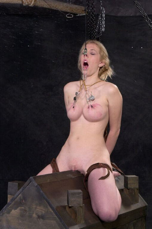 【SMエロ画像】鋭利な背中に乗って絶叫するM女たちの三角木馬拷問www 25