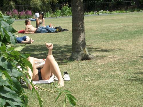 【パンチラエロ画像】草むらで隙だらけwパンツ見せ過ぎな外人さんの休日www 04
